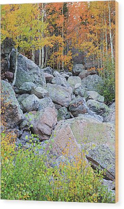 Wood Print featuring the photograph Painted Rocks by David Chandler