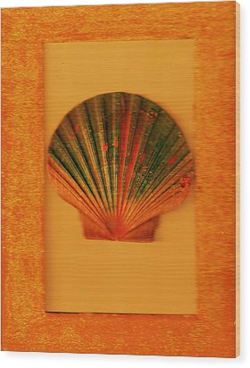 Painted Shell II Wood Print by Anne-Elizabeth Whiteway