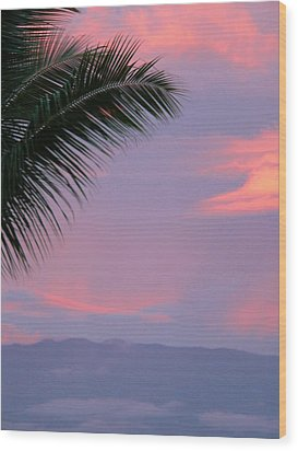 Wood Print featuring the photograph Painted Sky by Debbie Karnes