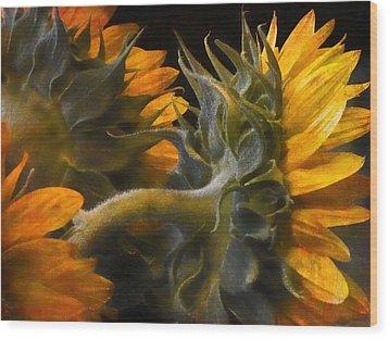 Painted Sun Flowers Wood Print by John Rivera