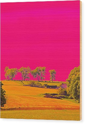Painter Ridge Wood Print by Gillis Cone