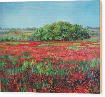 Painting Of Indian Paintbrush In Oklahoma Wood Print by Cheri Wollenberg