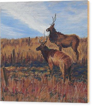Pair O' Bulls Wood Print