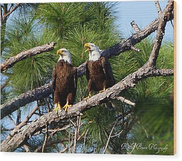 Wood Print featuring the photograph Pair Of American Bald Eagle by Barbara Bowen