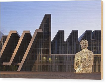 Palacio De Congresos Zaragoza Spain Wood Print by Marek Stepan