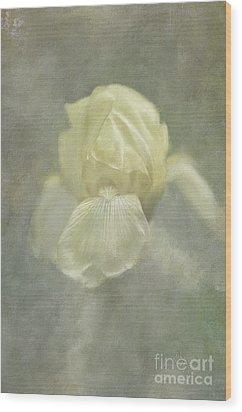 Wood Print featuring the digital art Pale Misty Iris by Lois Bryan