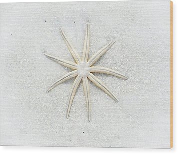 Pale Star Wood Print by Lynn Wohlers