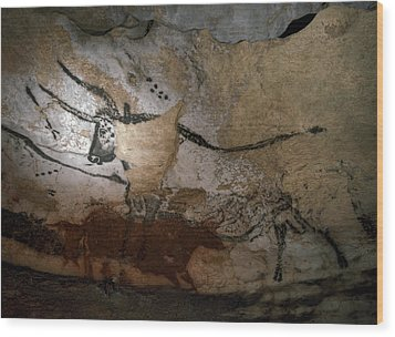 Paleolithic Art Of Bulls On Calcite Wood Print by Keenpress