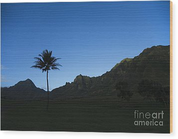 Palm And Blue Sky Wood Print by Dana Edmunds - Printscapes