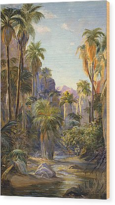 Palm Canyon Wood Print by Lewis A Ramsey