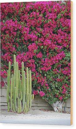 Palm Desert Blooms Wood Print