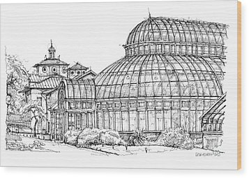 Palm House In Brooklyn Botanic Gardens Wood Print by Adendorff Design