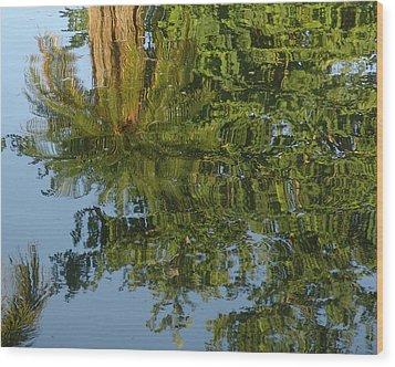 Palm Mirror Wood Print by Florene Welebny