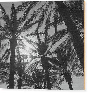 Palm Saturday Wood Print