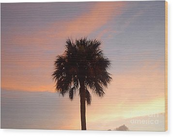 Palm Sky Wood Print by David Lee Thompson