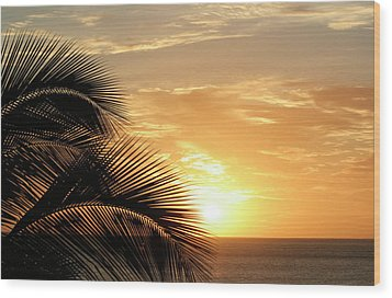 Palm Sunset 2 Wood Print