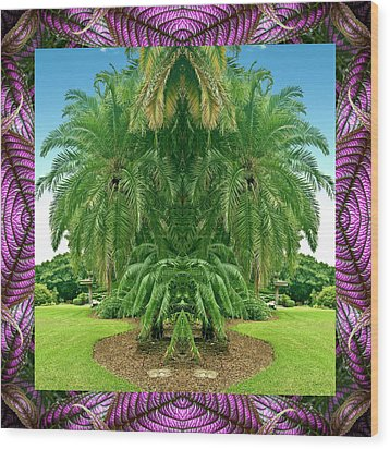 Palm Tree Ally Wood Print by Bell And Todd