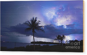Palm Tree Nights Wood Print