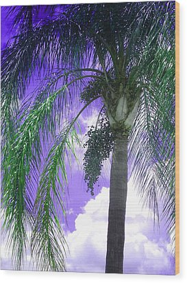 Palm Tree Seeding Wood Print by Rosalie Scanlon