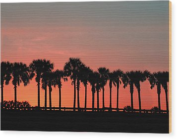 Wood Print featuring the photograph Palm Tree Sunset by Joel Witmeyer