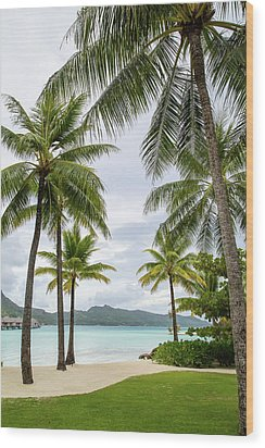 Palm Trees 1 Wood Print