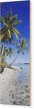 Palm Trees And Motorized Dinghy Wood Print by Jeremy Woodhouse