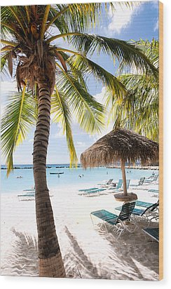 Palm Trees And Palapa Wood Print by George Oze