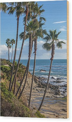 Wood Print featuring the photograph Palm Trees At Monument Point Laguna Beach by Cliff Wassmann