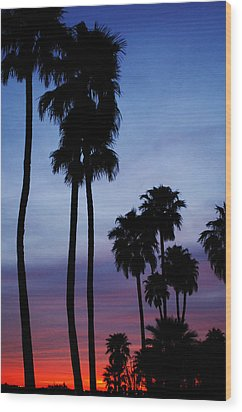 Palm Trees At Sunset Wood Print by Jill Reger