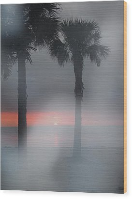 Palm Trees In The Fog Wood Print by Penfield Hondros