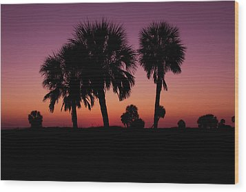 Wood Print featuring the photograph Palm Trees Silhouette by Joel Witmeyer