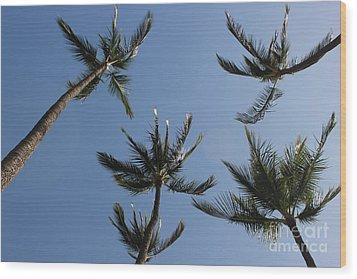 Wood Print featuring the photograph Palm Trees by Wilko Van de Kamp