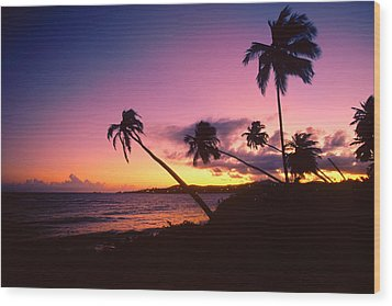Palmas Del Mar Sunset Puerto Rico Wood Print by George Oze