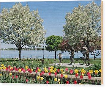 Palmer Park In Spring Wood Print