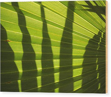 Wood Print featuring the photograph Palmetto 4 by Renate Nadi Wesley