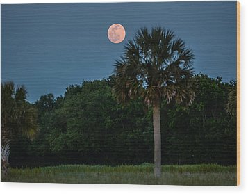 Wood Print featuring the photograph Palmetto Full Moon by RC Pics