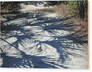Palmetto Shadows Wood Print