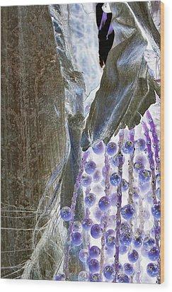 Backlit Blueberries Wood Print