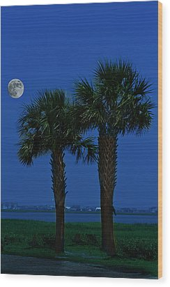 Wood Print featuring the photograph Palms And Moon At Morse Park by Bill Barber