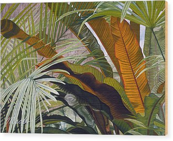 Palms At Fairchild Gardens Wood Print by Stephen Mack