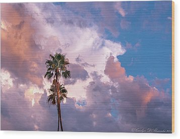 Palms At Sunset Wood Print by Carolyn Dalessandro