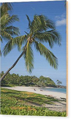 Palms Over Beach Wood Print by Ron Dahlquist - Printscapes