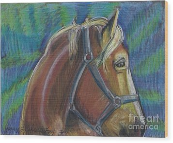 Palomino  Drawing Wood Print by Jamey Balester