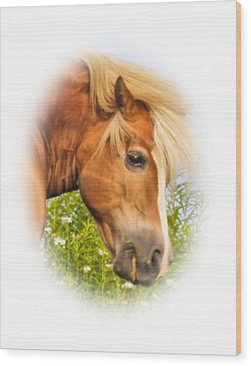 Wood Print featuring the photograph Palomino Head by Debbie Stahre