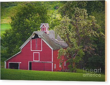 Palouse Barn Number 9 Wood Print by Inge Johnsson