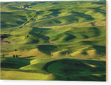 Palouse Contours Wood Print by Mike  Dawson