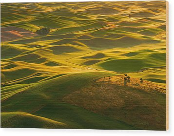 Wood Print featuring the photograph Palouse Swells by Dan Mihai