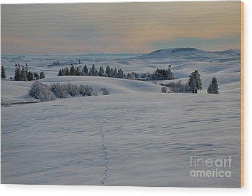 Palouse Tracks Wood Print by Idaho Scenic Images Linda Lantzy