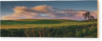 Wood Print featuring the photograph Palouse Tree Of Life by Dan Mihai