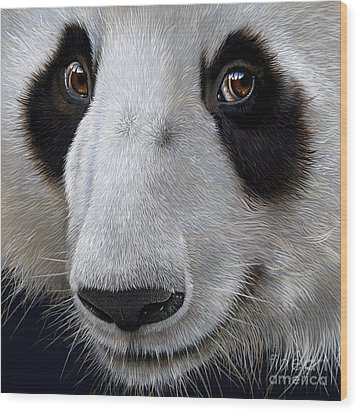 Panda Bear Wood Print by Jurek Zamoyski